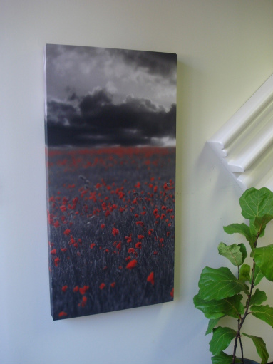 GIK Acoustics Acoustic Art Panel on wall next to a diffuser