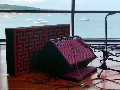 Amplifier with Standing Impression Pro Series Bass Trap with Braids pattern in Mahogany finish with black fabric