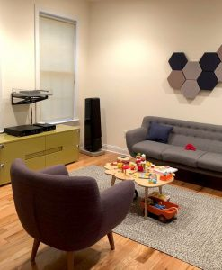 GIK Acoustics DecoShapes Decorative Hexagon Acoustic panels in mark pinsk living room